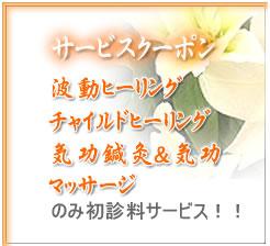 【安城気功】2011年11月26日(土曜日)気功道場体験談