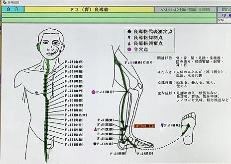 耳鳴りと腎の経絡